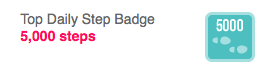 FitBit Badge #1
